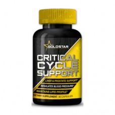 Препарат для послекурсовой терапии Gold Star Critical Cycle Support (PCT (90 капс)
