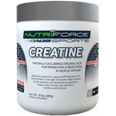 Креатин Nutriforce Sports Creatine (300 г)