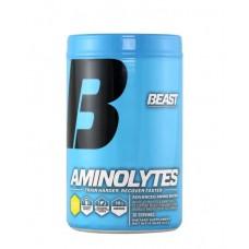 BCAA аминокислоты BEAST Aminolytes (400 г)