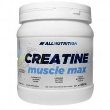 Креатин All Nutrition Creatine Muscle Max (500 г)