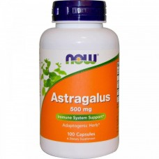 Астрагал Now Foods Astragalus 500 мг (100 капсул)