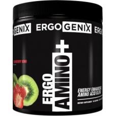 BCAA аминокислоты ErgoGenix Ergo Amino + (380 г)